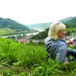Wein-Picknick mit Blick über Spitz an der Donau