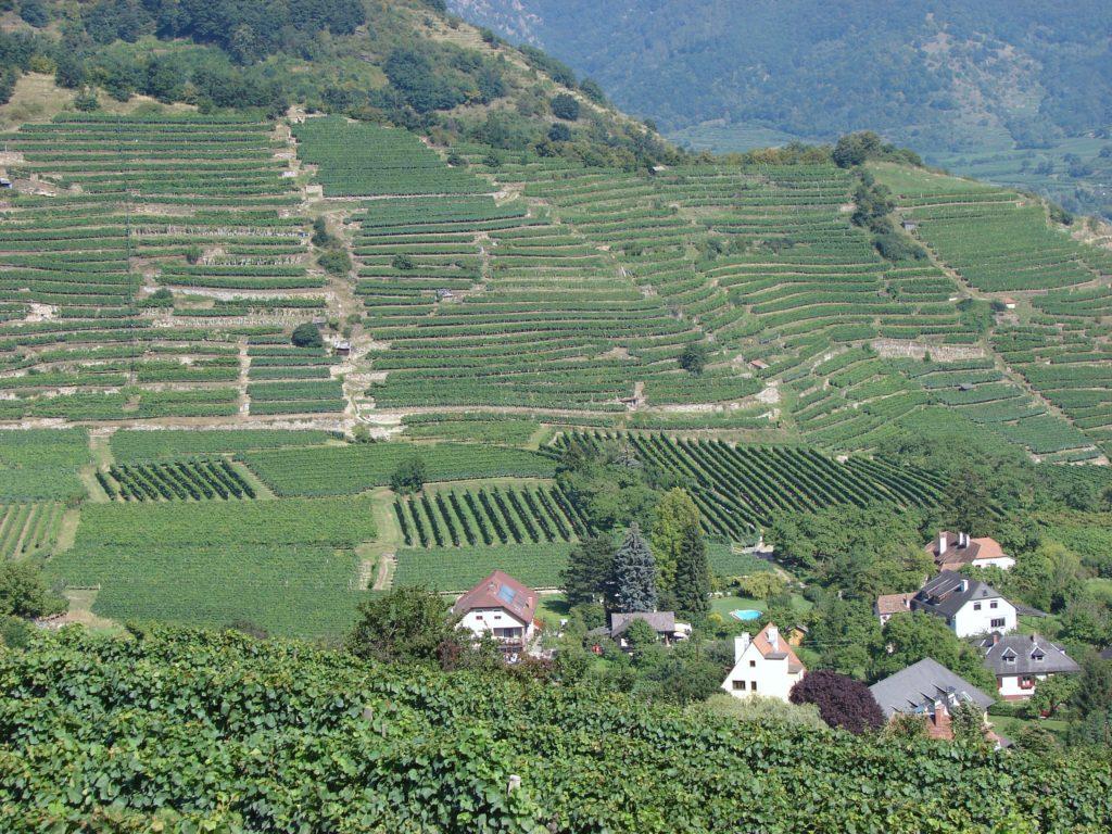 Gästehaus Weinbergblick Luftaufnahme